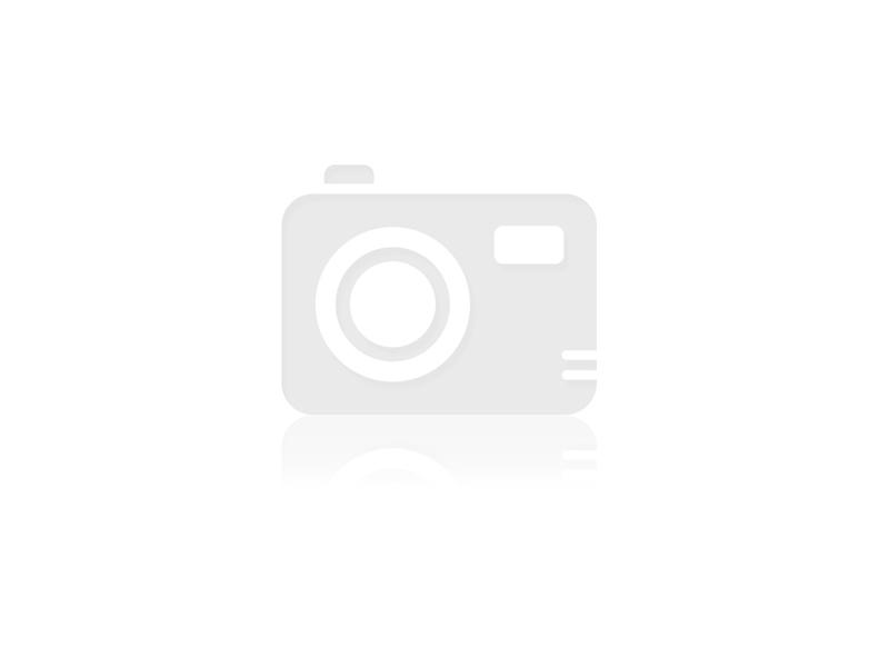 PANDORA Disney Charm Anhänger 796342 Kl...